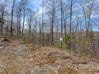 Lot for sale in Grandes-Piles, Mauricie, Chemin  Flora-Marchand, 24538364 - Centris.ca