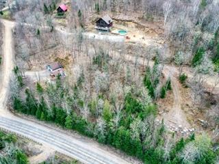 Terrain à vendre à Amherst, Laurentides, Route  323 Nord, 19794914 - Centris.ca