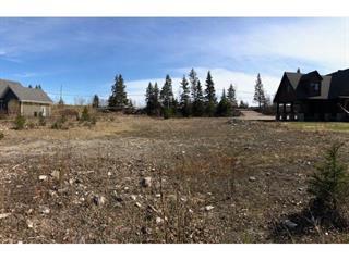 Terrain à vendre à Saguenay (Laterrière), Saguenay/Lac-Saint-Jean, Chemin du Portage-des-Roches Sud, 12522246 - Centris.ca