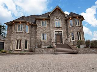 Maison à vendre à Saint-Lucien, Centre-du-Québec, 155, Rue de la Seigneurie, 15662510 - Centris.ca