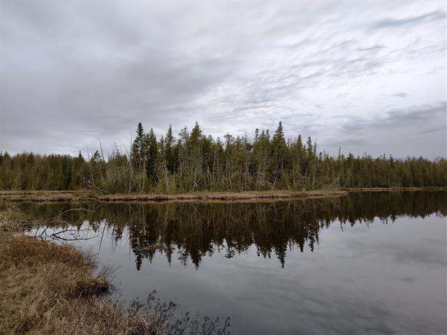 Land for sale in Low, Outaouais, Chemin  McDonald, 25868524 - Centris.ca