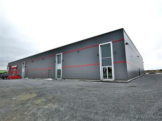 Industrial unit for rent in Saint-Hyacinthe, Montérégie, 7225, boulevard  Choquette, 27009048 - Centris.ca