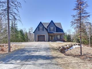 House for sale in Sainte-Agathe-des-Monts, Laurentides, 461, Chemin des Chalumeaux, 18046846 - Centris.ca