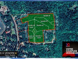 Lot for sale in Ripon, Outaouais, 6, Chemin de la Montagne, 25357642 - Centris.ca