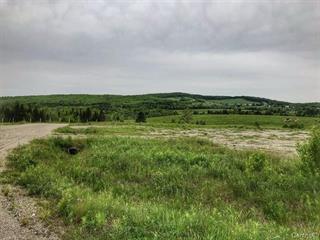 Terre à vendre à Ham-Nord, Centre-du-Québec, Route  161, 12929172 - Centris.ca