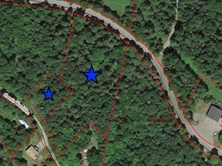 Terrain à vendre à Wentworth, Laurentides, Chemin  Louisa, 17052994 - Centris.ca