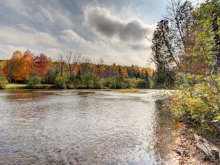 Terrain à vendre à Amherst, Laurentides, 1656, Impasse des Rapides, 22199522 - Centris.ca