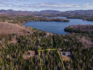 Terrain à vendre à Lac-Supérieur, Laurentides, Chemin des Alouettes, 12823059 - Centris.ca