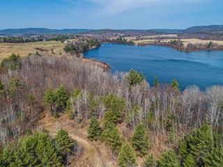 Land for sale in Chichester, Outaouais, Chemin de Chapeau-Sheenboro, 22325478 - Centris.ca