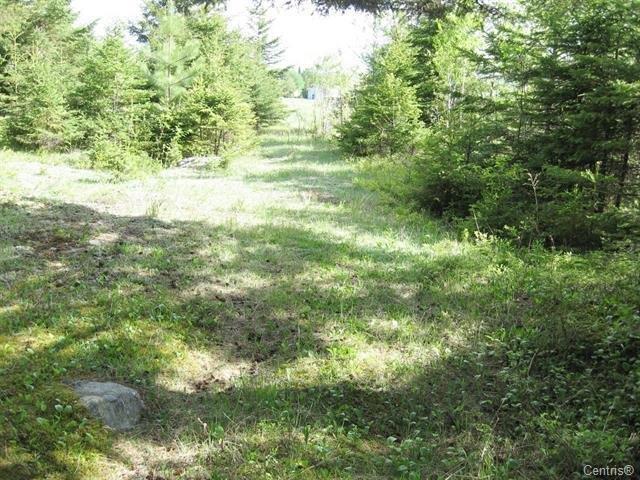 Terre à vendre à Saint-Nazaire, Saguenay/Lac-Saint-Jean, Route  172 Est, 22179389 - Centris.ca