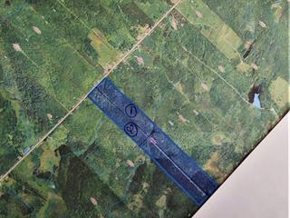 Land for sale in Saint-Fabien-de-Panet, Chaudière-Appalaches, Rang  Saint-Jean-Baptiste, 22046797 - Centris.ca