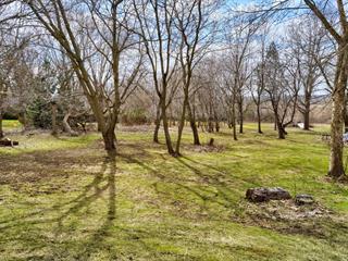 Terrain à vendre à Farnham, Montérégie, 1528, Chemin des Coteaux, 17421114 - Centris.ca