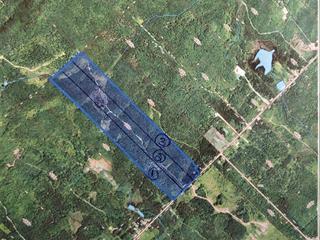 Land for sale in Saint-Fabien-de-Panet, Chaudière-Appalaches, Rang  Saint-Jean-de-Brébeuf, 19899343 - Centris.ca