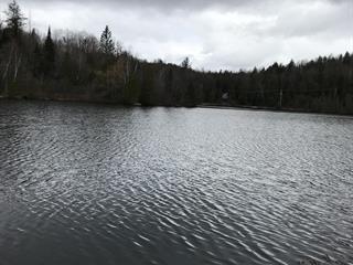 Terrain à vendre à Wentworth-Nord, Laurentides, Chemin du Lac-Saint-Louis, 24646872 - Centris.ca