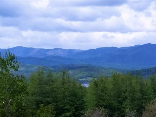 Terrain à vendre à La Malbaie, Capitale-Nationale, Rang du Ruisseau-des-Frênes, 15509625 - Centris.ca