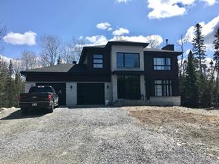 Maison à vendre à Saint-Antonin, Bas-Saint-Laurent, 22, Rue  Willie, 28872416 - Centris.ca