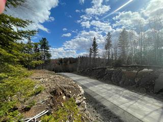 Terrain à vendre à Sainte-Anne-des-Lacs, Laurentides, Chemin des Rossignols, 24540444 - Centris.ca