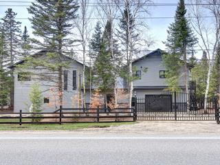 Maison à vendre à Chute-Saint-Philippe, Laurentides, 217, Chemin du Lac-Saint-Paul, 17050470 - Centris.ca