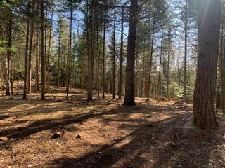 Lot for sale in Morin-Heights, Laurentides, Rue des Trois-Pierre, 14539860 - Centris.ca