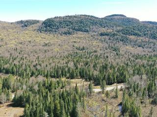 Terrain à vendre à Lac-Supérieur, Laurentides, Chemin du Lac-Supérieur, 27783453 - Centris.ca