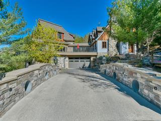 Maison à vendre à Sainte-Adèle, Laurentides, 765, Rue  Morin, 18352746 - Centris.ca