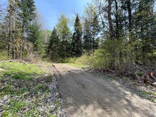 Terrain à vendre à Saint-Tite, Mauricie, Chemin  Saint-Thomas, 10820553 - Centris.ca
