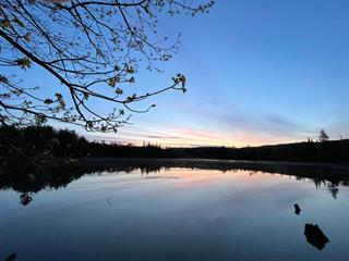 Land for sale in Wentworth-Nord, Laurentides, Rue  Louise, 17523593 - Centris.ca