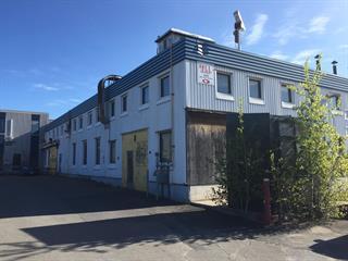Industrial unit for sale in Alma, Saguenay/Lac-Saint-Jean, 1045, Rue des Pins Ouest, 23983248 - Centris.ca