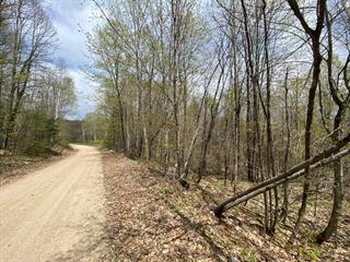 Terre à vendre à Sheenboro, Outaouais, Rang 12, 15011174 - Centris.ca