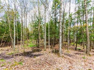 Land for sale in Lac-Brome, Montérégie, Chemin  Turner, 21952790 - Centris.ca