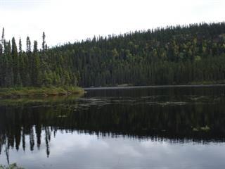 Lot for sale in Rivière-Mistassini, Saguenay/Lac-Saint-Jean, 1, Lac  Félix, 10613216 - Centris.ca