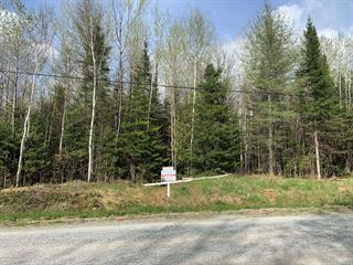Terrain à vendre à Stratford, Estrie, Chemin  Aylmer, 23070944 - Centris.ca