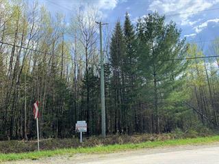 Lot for sale in Stratford, Estrie, Chemin  Aylmer, 21624245 - Centris.ca