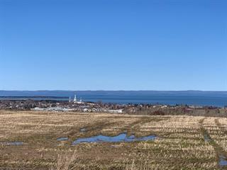 Terrain à vendre à Notre-Dame-des-Neiges, Bas-Saint-Laurent, 13-15, 2e Rang Est, 24133681 - Centris.ca