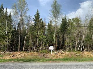 Lot for sale in Stratford, Estrie, Chemin  Aylmer, 28980234 - Centris.ca