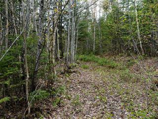 Terrain à vendre à Mandeville, Lanaudière, Chemin de la Montagne, 15076945 - Centris.ca
