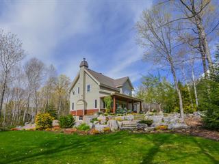 Maison à vendre à Saint-Donat (Lanaudière), Lanaudière, 27, Chemin  Cariboyan, 19064795 - Centris.ca