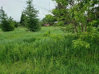 Terrain à vendre à Notre-Dame-de-la-Salette, Outaouais, 25, Rue  Rollin, 14286494 - Centris.ca