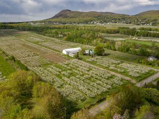 Farm for sale in Saint-Jean-Baptiste, Montérégie, 4330 - 4350, Rang des Étangs, 9536431 - Centris.ca
