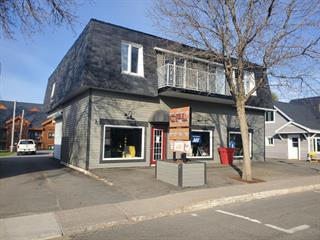 Business for sale in Saint-Donat (Lanaudière), Lanaudière, 350, Rue  Principale, 13959402 - Centris.ca
