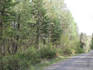 Land for sale in Chertsey, Lanaudière, Avenue  Bourgeois, 11092091 - Centris.ca
