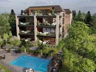 Condo for sale in Magog, Estrie, 119, Rue  Merry Sud, apt. 3, 28238472 - Centris.ca