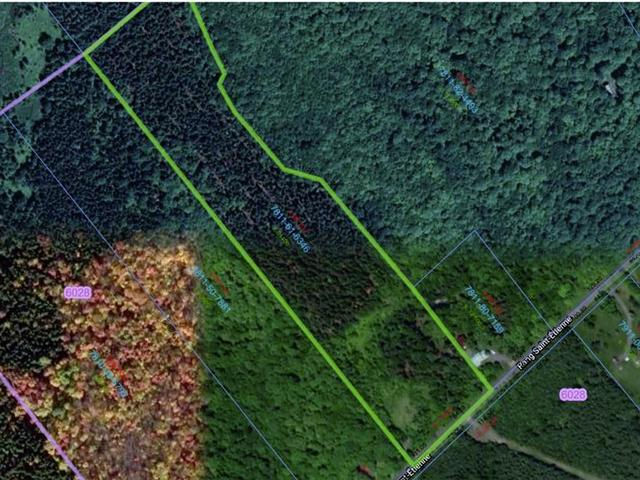 Terre à vendre à Saint-Alfred, Chaudière-Appalaches, 450, Rang  Saint-Étienne, 21454119 - Centris.ca