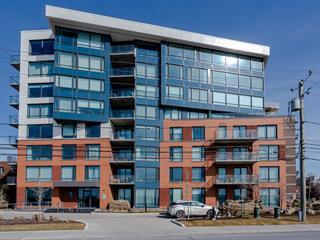 Condo à vendre à Saint-Lambert (Montérégie), Montérégie, 295, Rue  Riverside, app. 307, 25313425 - Centris.ca