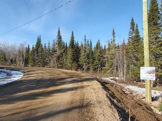 Lot for sale in Petite-Rivière-Saint-François, Capitale-Nationale, Chemin  Pierre-Perreault, 24429180 - Centris.ca