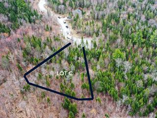 Terrain à vendre à Sainte-Agathe-des-Monts, Laurentides, Chemin de la Crête, 25191930 - Centris.ca