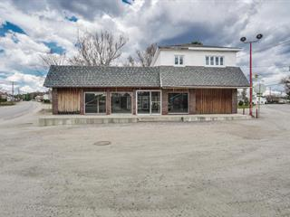 Commercial building for sale in Otter Lake, Outaouais, 3, Rue  Quaile, 19879567 - Centris.ca