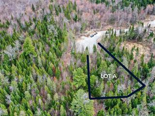 Lot for sale in Sainte-Agathe-des-Monts, Laurentides, Chemin de la Crête, 12491786 - Centris.ca