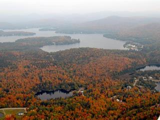 Terre à vendre à Lac-Supérieur, Laurentides, Chemin du Lac-Quenouille, 25036463 - Centris.ca