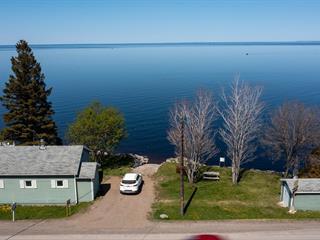 Chalet à vendre à Chambord, Saguenay/Lac-Saint-Jean, 509, Route  169, 24299000 - Centris.ca